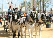 Andalusia, Spain, Fair of horse, horses carriage Stock Photography