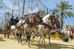 Andalusia, Spain, Fair of Seville carriage and horse Royalty Free Stock Photography