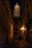 Andalusia Spanien, Malaga domkyrkas sikt för natt för torn för klocka Arkivbild