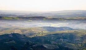 andalusian взгляд сверху горы сельской местности Стоковые Изображения RF