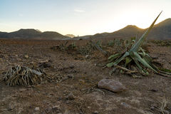 Andalusian countryside. Special landscape: sea and mountains in the national park Cabo de Gata at sunrise stock image