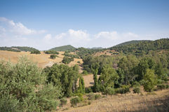 Andalusian countryside Stock Photos