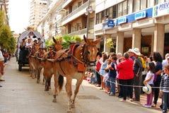 andalusian el-en-hästar vallfärdar rociorouten till royaltyfria foton