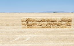 Andalusian landscape. With the hay stacks royalty free stock images