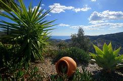 Andalusian Landscape Royalty Free Stock Photo