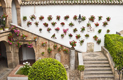 Andalusian patio. View of a typical Andalusian patio in Cordoba Royalty Free Stock Photo