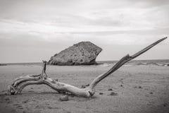 Andalusian strand arkivbilder