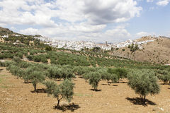 Andalusian village Alora, Spain Stock Photo