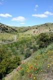 Andalusien-Landschaft im Frühjahr Stockfotos