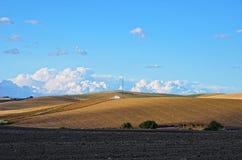 Andalusische landwirtschaftliche Landschaft im Frühjahr Lizenzfreies Stockfoto