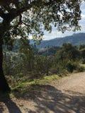 Andalusische Schönheit und Berglandschaften Stockbild