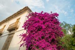 Andalusischer Charme stockbilder