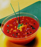 Andaluz gazpacho. Cold Spanish tomato-based raw vegetable soup Royalty Free Stock Image