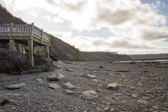 Andam aos penhascos na maré baixa, os penhascos fósseis de Joggins, Nova Scotia, fotos de stock royalty free