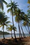 andam wody plażowe błękitny jasne krystaliczne Zdjęcie Royalty Free