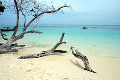 Andaman Beach XIX Royalty Free Stock Photos