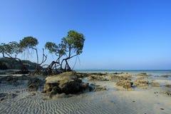 Andaman Inseln von Indien Stockfoto