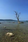Andaman Islands of India Royalty Free Stock Photos
