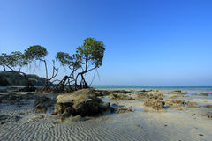 Andaman Islands of India Stock Photo