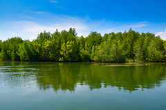 Andaman sea mangrove forest, Thailand Stock Photo