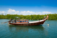 Andaman sea mangrove forest, Thailand Royalty Free Stock Images