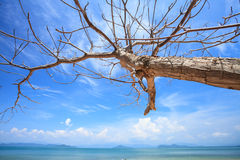 Andaman Sea. Payam Beach in Andaman Sea Stock Images