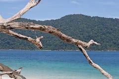 Andaman-Seehelles Blau des Tages Koh Lipe Stockfotografie