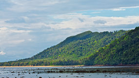Andaman Shore Royalty Free Stock Photography