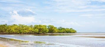 Andaman Shore At Low Tide Stock Photo