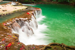 Andaman Thailand outdoor photography of waterfall in rain jungle forest. Trees, PHUKET, Stock Photography