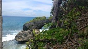 Andaman wyspy, plaża obrazy royalty free