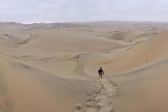 Andando apenas no deserto de Huacachina, Peru imagem de stock
