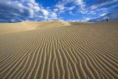 Andando as dunas - grande parque nacional de dunas de areia Imagem de Stock Royalty Free