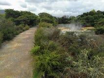 Andando através da cidade de Rotorua, Nova Zelândia, famosa para ela foto de stock