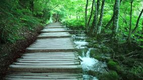 Andando através da floresta da montanha próximo ao lago, Vista dos lagos Plitvice vídeos de arquivo