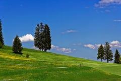 Andando in bicicletta nel paesaggio collinoso di Allgau alla molla Fotografie Stock Libere da Diritti