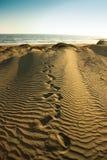 Andando dalla spiaggia immagini stock libere da diritti