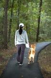 Andando o cão Fotografia de Stock