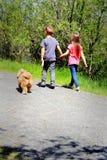 Andando o cão Imagem de Stock