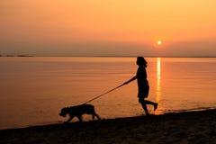Andando o cão ao longo da praia Foto de Stock