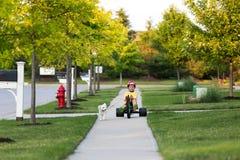 Andando o cão com o triciclo na vizinhança Fotos de Stock