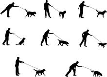 Andando um cão Fotografia de Stock