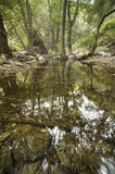Andarax rzeka Obrazy Royalty Free