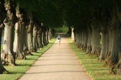 Andare attraverso Fotografia Stock