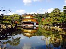 Ande av Japan Arkivbild
