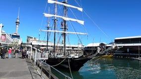 Ande av Nya Zeeland i Auckland Nya Zeeland lager videofilmer