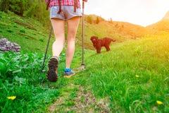 Ande nas montanhas da menina com cão fotografia de stock