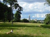 ande no gramado verde no parque da cidade com uma vista do Kyiv-Pechersk Lavra imagens de stock royalty free