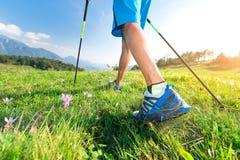 Ande no prado com as flores da mola com os polos de passeio do nordic imagens de stock