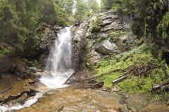 Ande och vår för vattenfall Sankt i det Rhodopes berget Arkivfoto